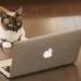 「自作PC 構成見積もり てすと」サイトの紹介